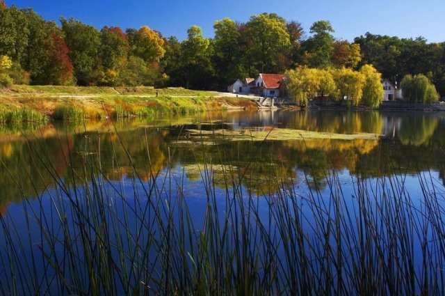 Parcul Natural Lunca Mureşului